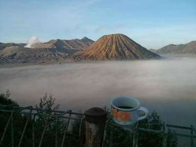 Cemara Indah Hotel, Best Place To Stay Near To Bromo