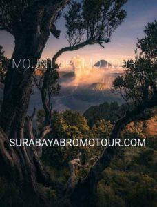 Mount Bromo Tour Indonesia Active Volcano