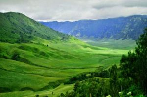 Teletubies Savanna of Mount Bromo